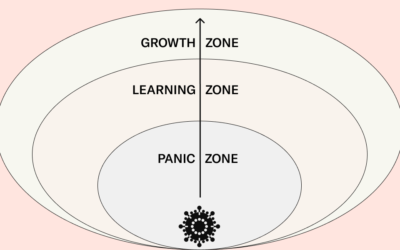 Emerging from the crisis: from the panic zone to the growth zone